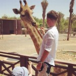 harrop-girafee.jpg